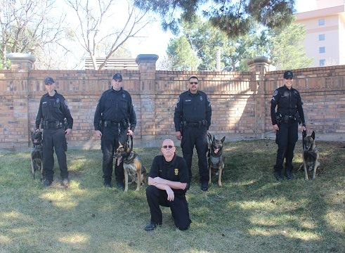 4 Police Officer handlers, 4 Belgian Malinois K-9 officers and commander posing by a brick wall